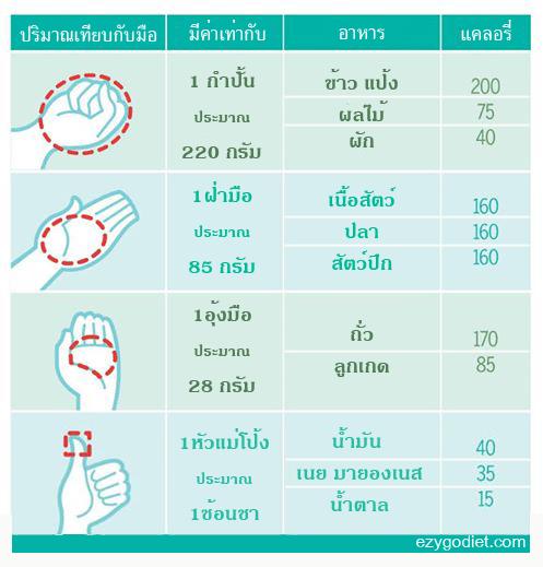 เปรียบเทียบปริมาณอาหารกับมือ