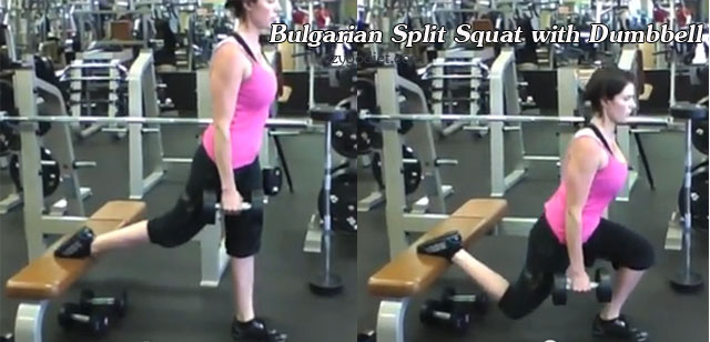 8bularian-split-squat