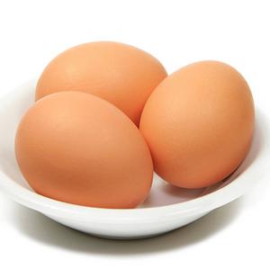 สารอาหารในไข่ไก่