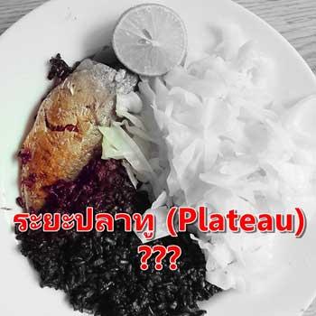 ระยะปลาทู (Plateau)
